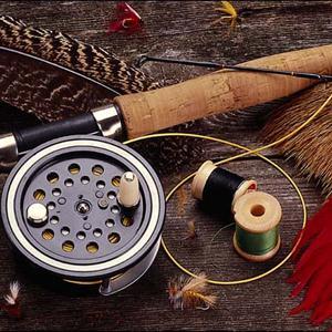 Охотничьи и рыболовные магазины Борисоглебского